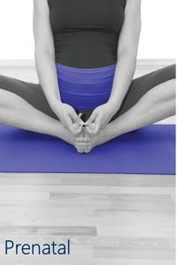 Prenatal Image